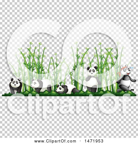 Transparent clip art background preview #COLLC1471953