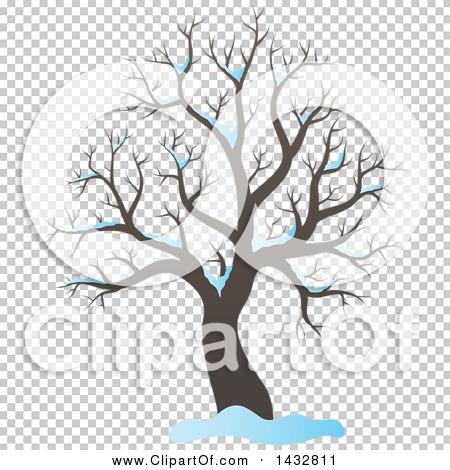 Transparent clip art background preview #COLLC1432811