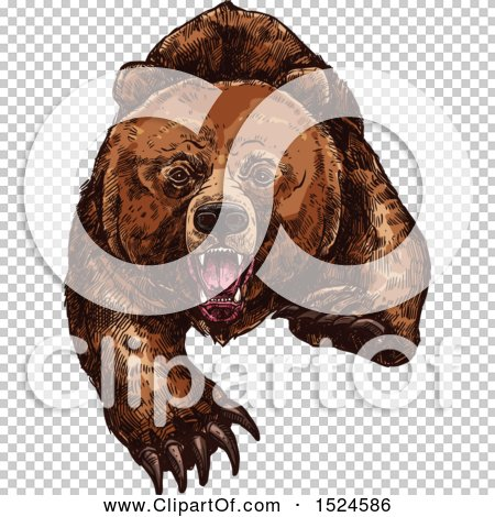 Transparent clip art background preview #COLLC1524586