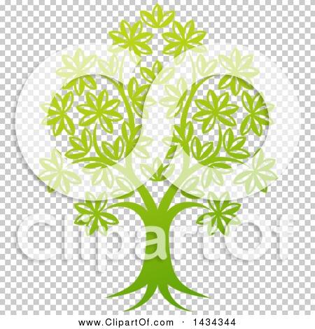 Transparent clip art background preview #COLLC1434344