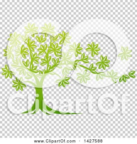 Transparent clip art background preview #COLLC1427588