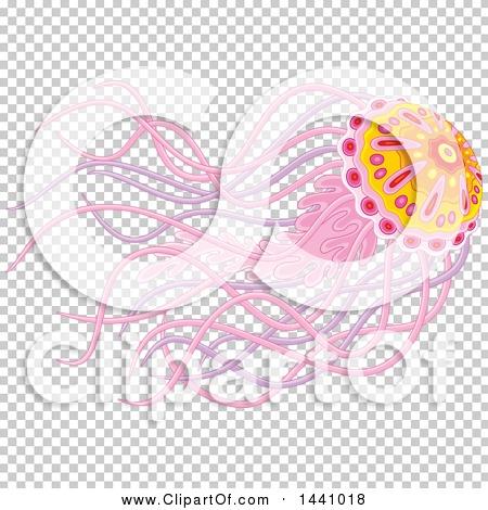Transparent clip art background preview #COLLC1441018