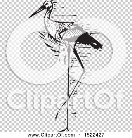 Transparent clip art background preview #COLLC1522427