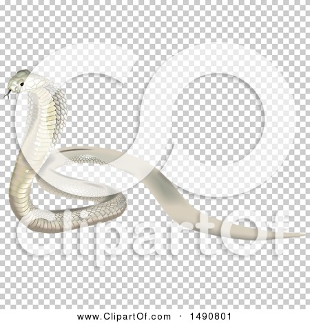 Transparent clip art background preview #COLLC1490801