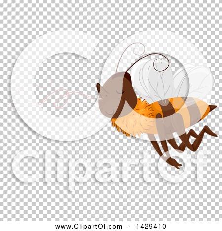 Transparent clip art background preview #COLLC1429410
