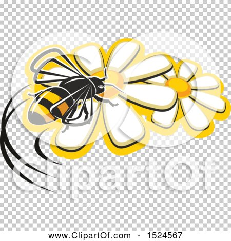 Transparent clip art background preview #COLLC1524567