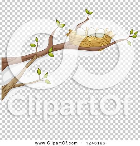 Transparent clip art background preview #COLLC1246186