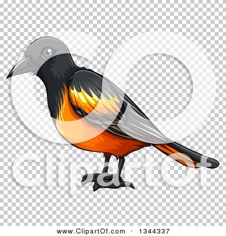Transparent clip art background preview #COLLC1344337