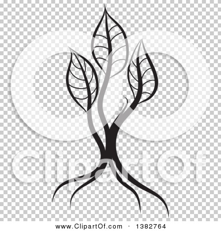 Transparent clip art background preview #COLLC1382764