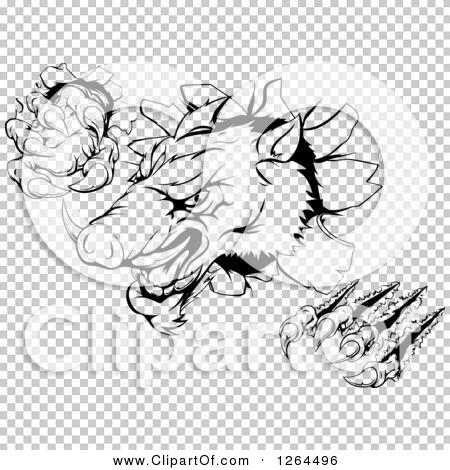 Transparent clip art background preview #COLLC1264496