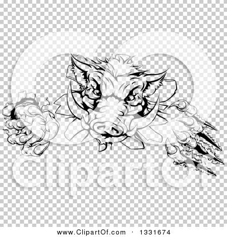 Transparent clip art background preview #COLLC1331674