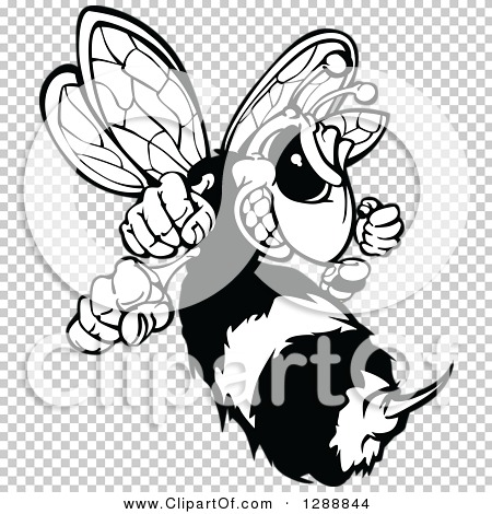Transparent clip art background preview #COLLC1288844