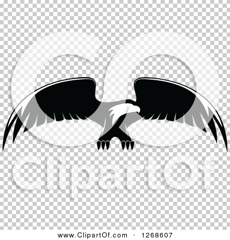 Transparent clip art background preview #COLLC1268607