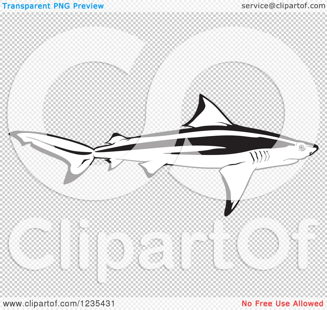 Clipart Of A Black And White Bull Shark Royalty Free