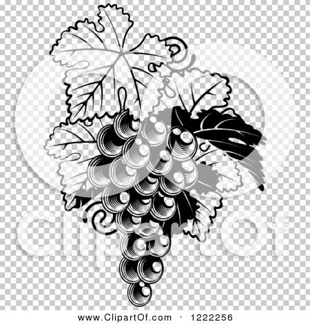 Transparent clip art background preview #COLLC1222256