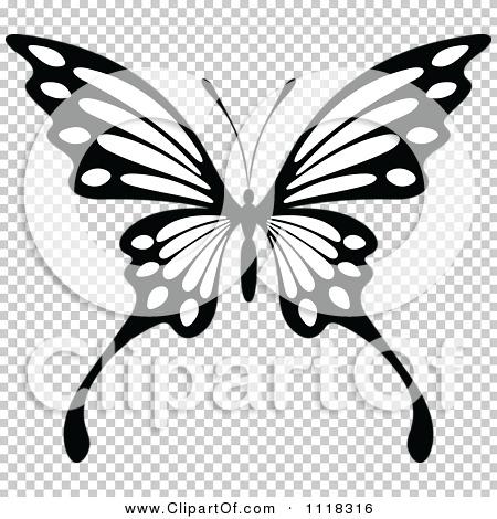 Transparent clip art background preview #COLLC1118316
