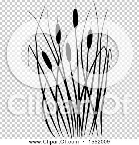 Transparent clip art background preview #COLLC1552009