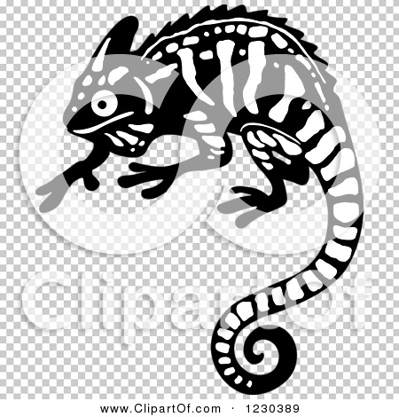 Transparent clip art background preview #COLLC1230389