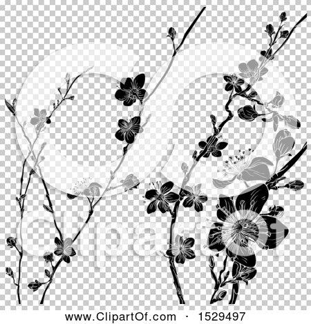 Transparent clip art background preview #COLLC1529497