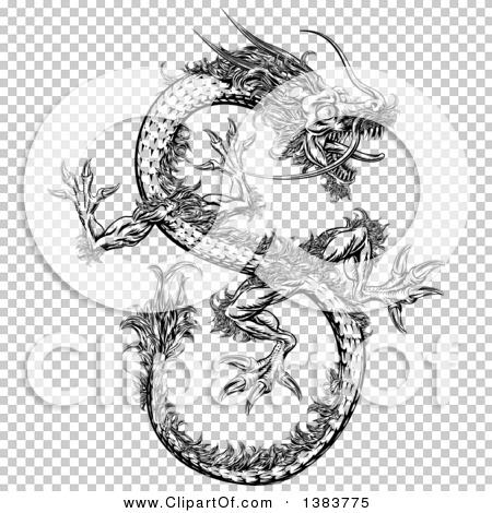 Transparent clip art background preview #COLLC1383775