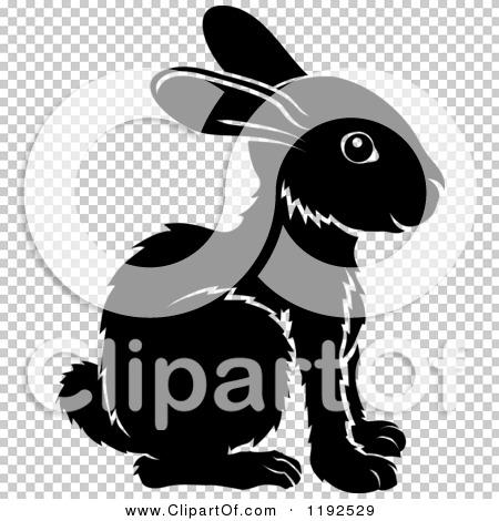 Transparent clip art background preview #COLLC1192529