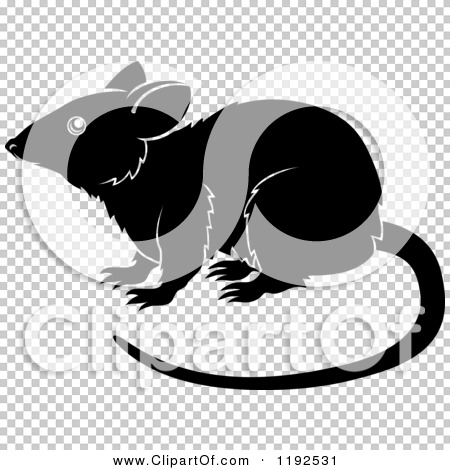 Transparent clip art background preview #COLLC1192531
