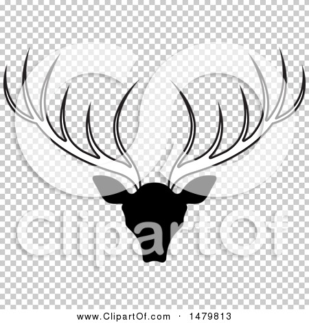 Transparent clip art background preview #COLLC1479813