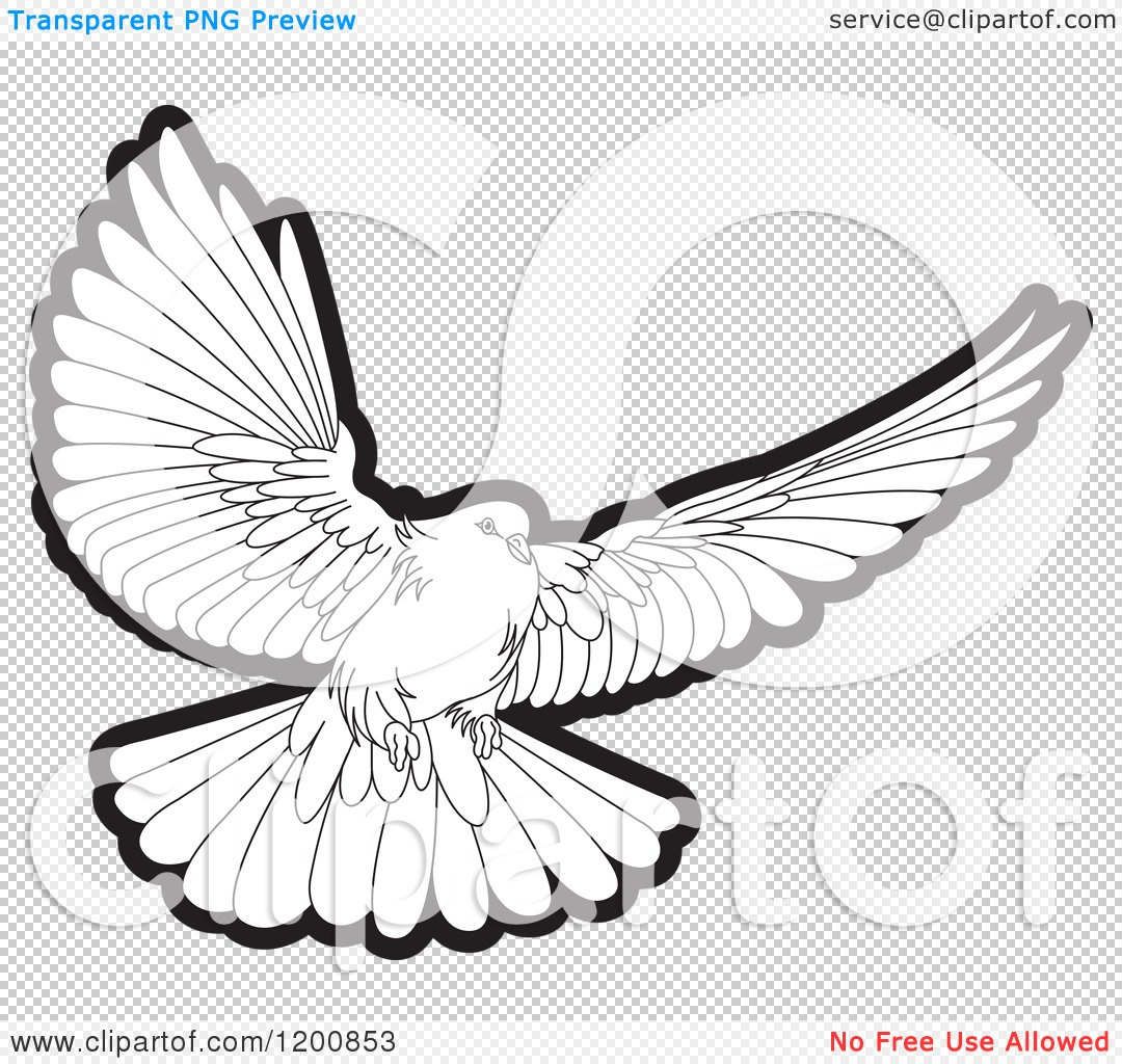 Clipart of a Black and White Dove Flying - Royalty Free Vector ...