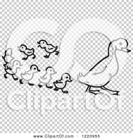 Transparent clip art background preview #COLLC1220955