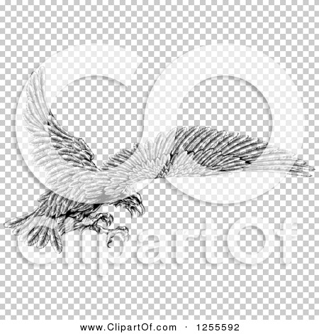 Transparent clip art background preview #COLLC1255592