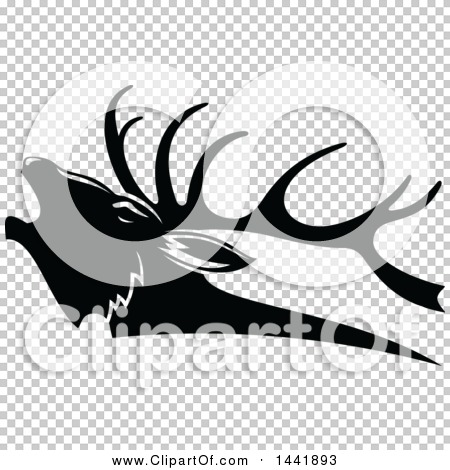 Transparent clip art background preview #COLLC1441893