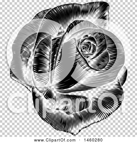 Transparent clip art background preview #COLLC1460280