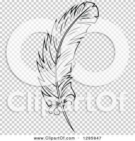 Transparent clip art background preview #COLLC1285847