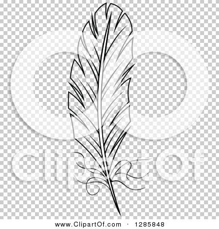 Transparent clip art background preview #COLLC1285848