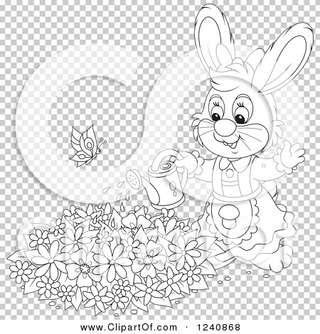 Transparent clip art background preview #COLLC1240868