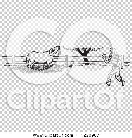 Transparent clip art background preview #COLLC1220907