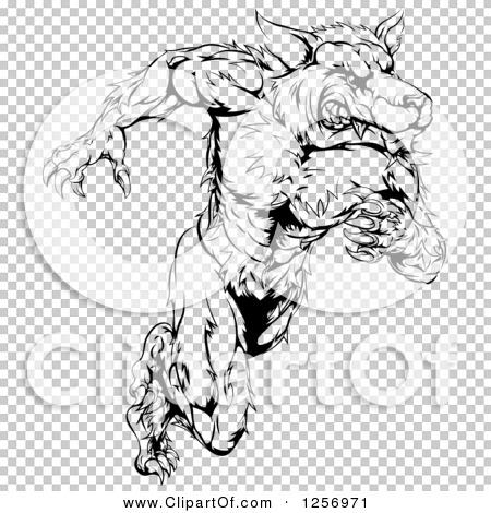 Transparent clip art background preview #COLLC1256971