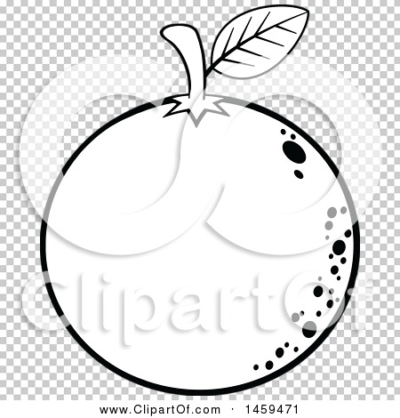 Transparent clip art background preview #COLLC1459471