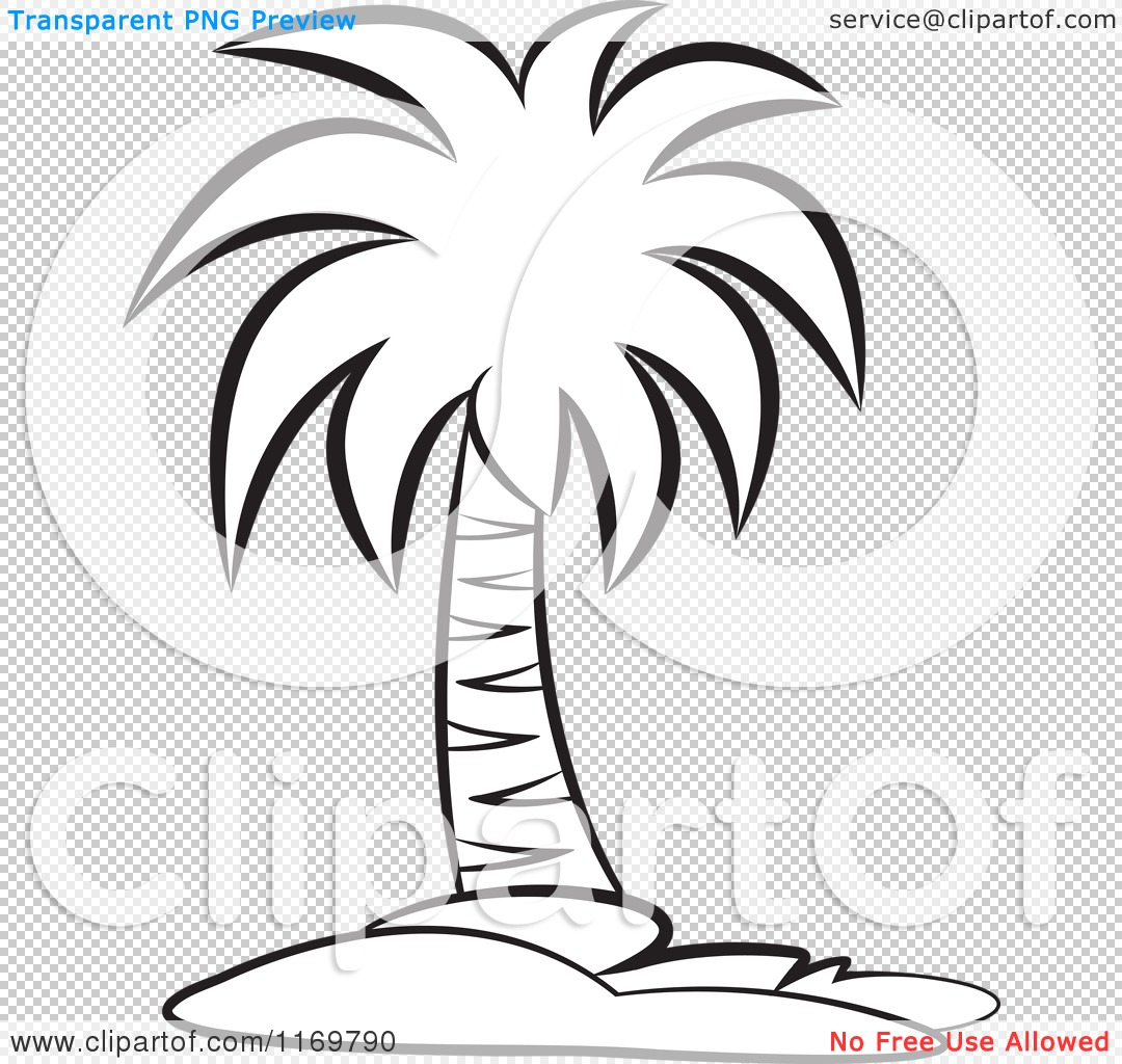 Palm Trees Drawing Black And White Black And White Palm Tree