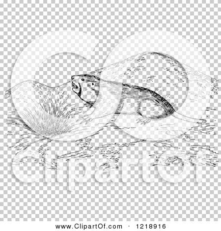 Transparent clip art background preview #COLLC1218916