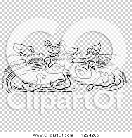 Transparent clip art background preview #COLLC1224265