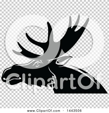 Transparent clip art background preview #COLLC1443506