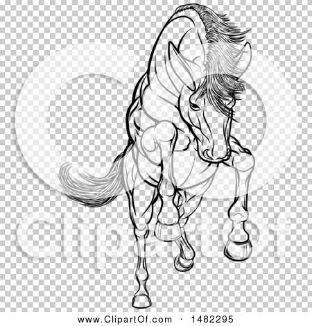 Transparent clip art background preview #COLLC1482295