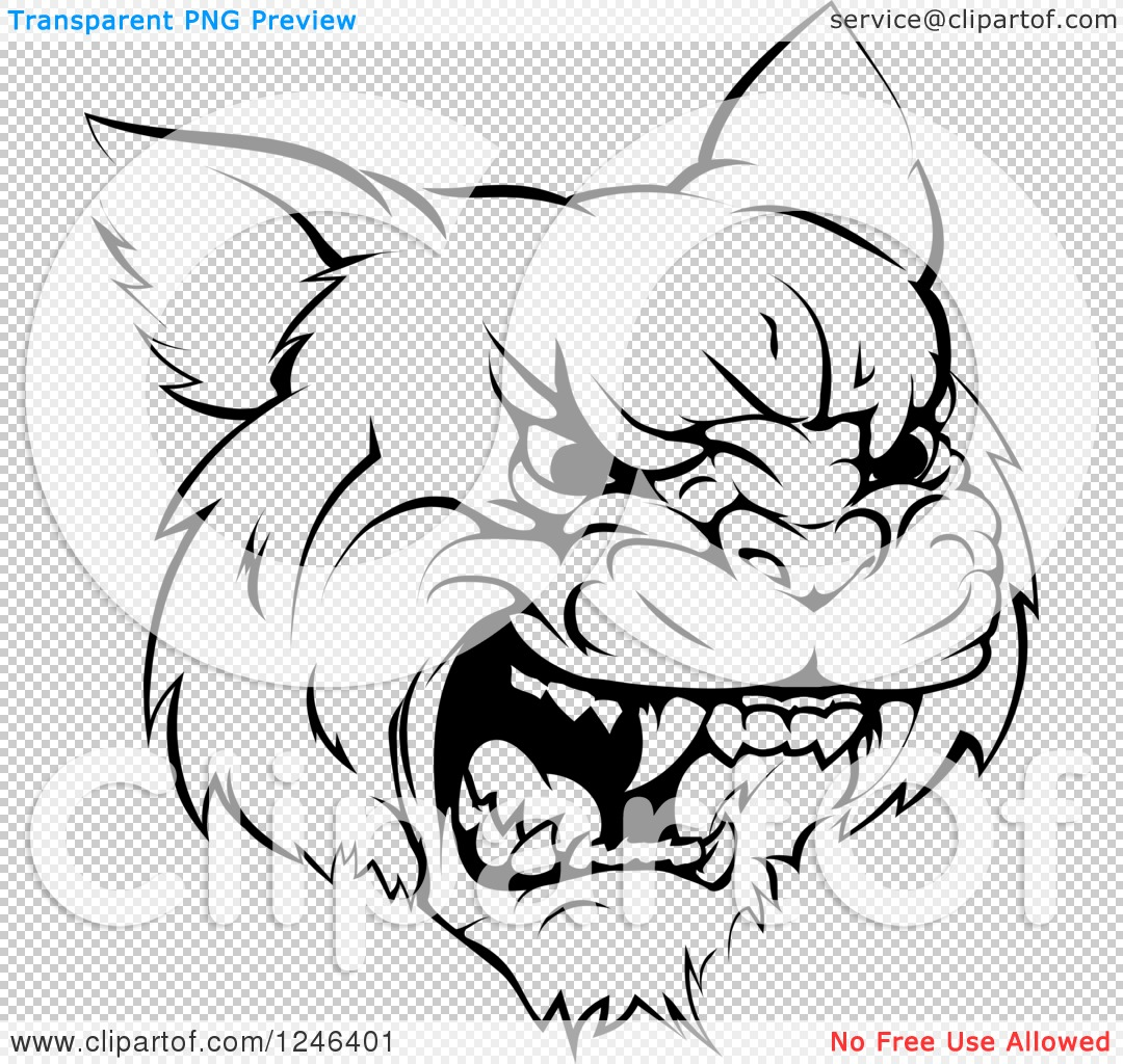 Clipart of a Black and White Roaring Aggressive Bobcat Mascot Head ...