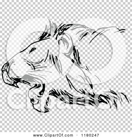 Transparent clip art background preview #COLLC1180247