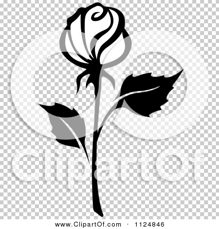 Transparent clip art background preview #COLLC1124846
