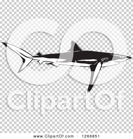 Transparent clip art background preview #COLLC1266851