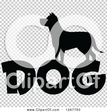 Transparent clip art background preview #COLLC1267750