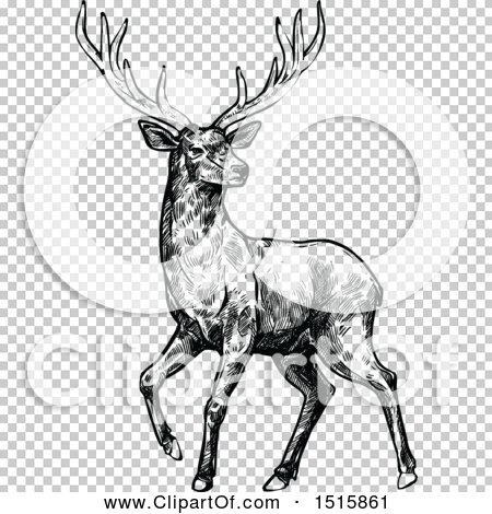 Transparent clip art background preview #COLLC1515861