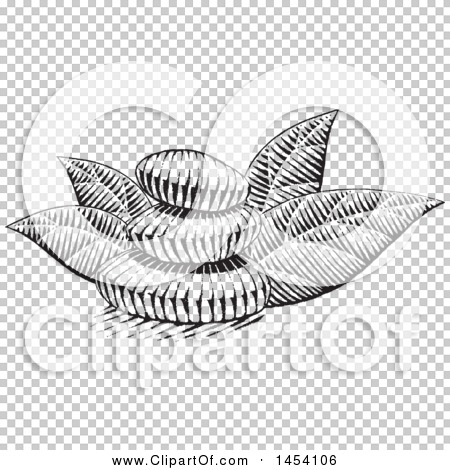 Transparent clip art background preview #COLLC1454106